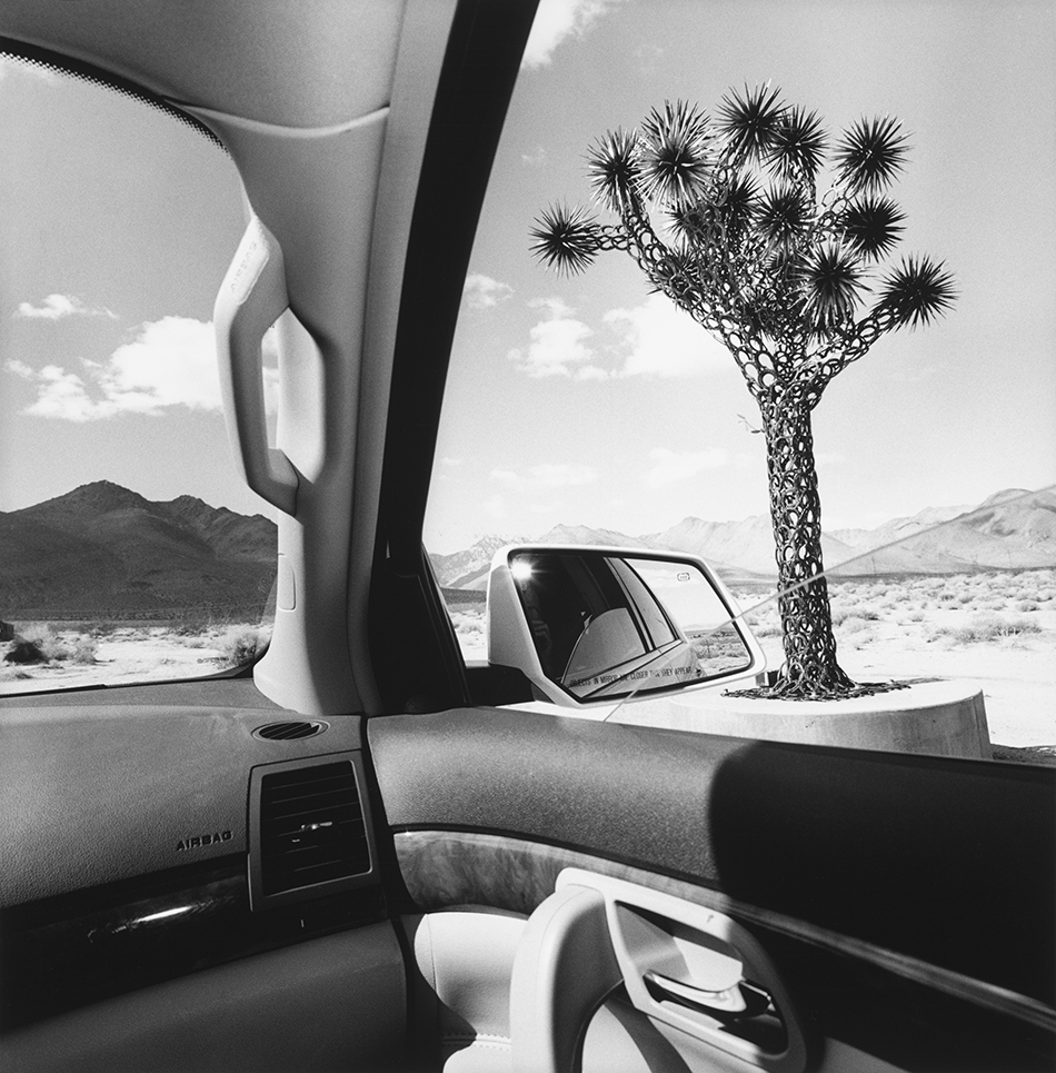 Foto Lee Friedlander