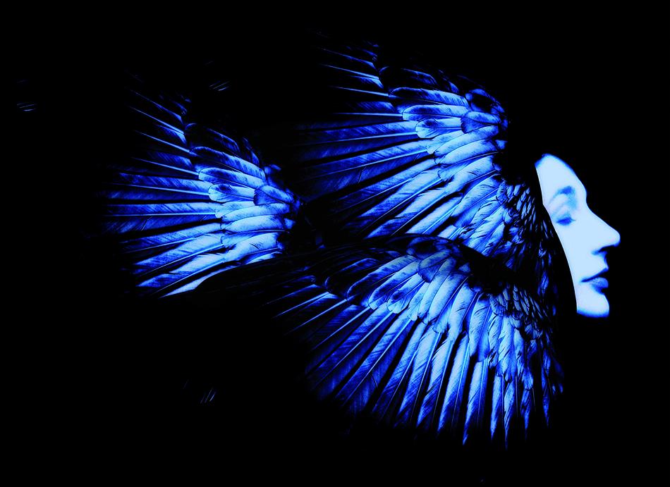 "<a href=""http://www.guidoharari.com/"" target=""_blank"">Foto Guido Harari</a>"