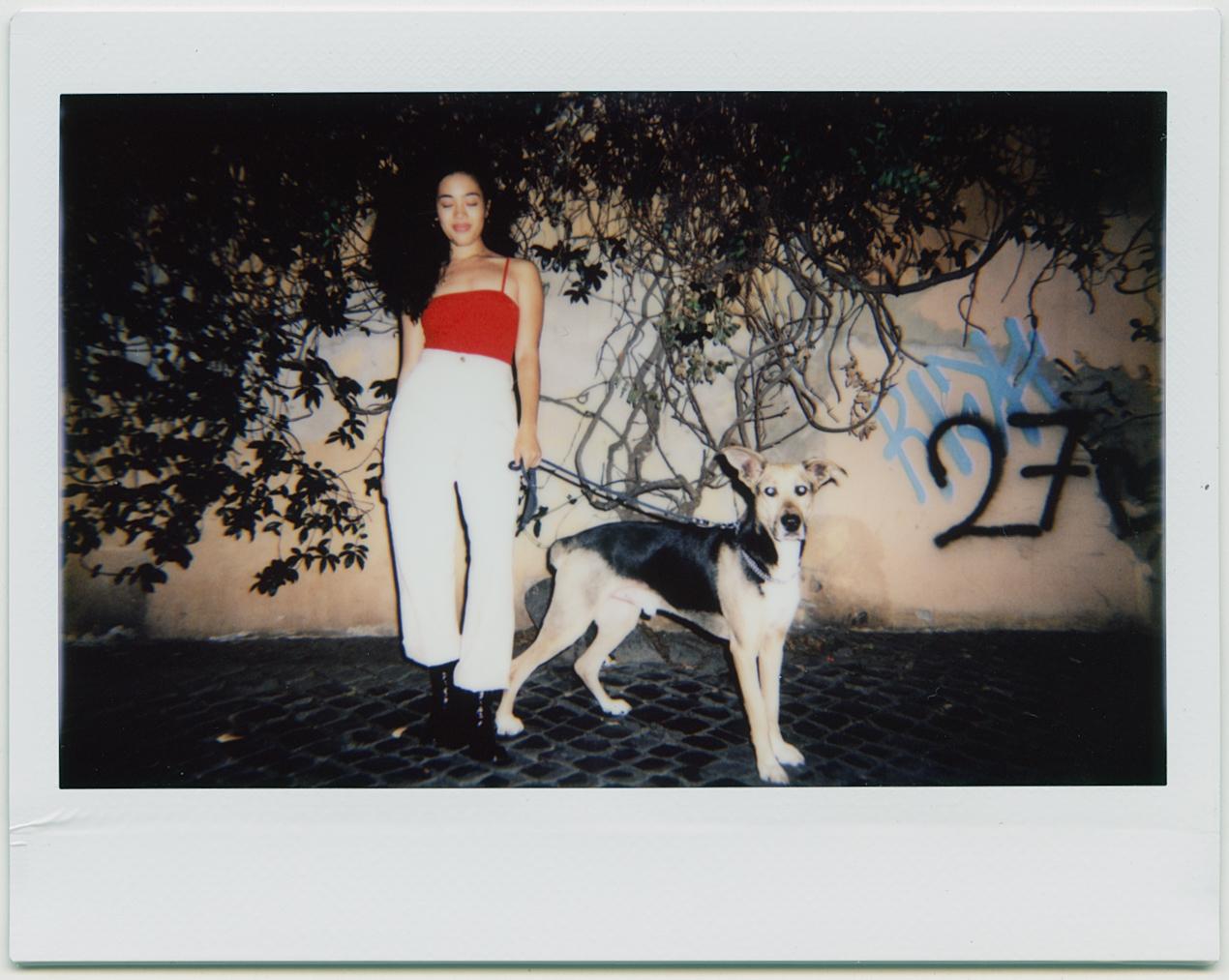 """<a href=""""http://www.kimberley-ross.com/"""" target=""""_blank"""">Foto Kimberley Ross</a>"""