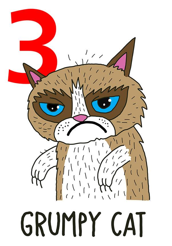 3 - Grumpy Cat / 'a Gatta (La gatta)