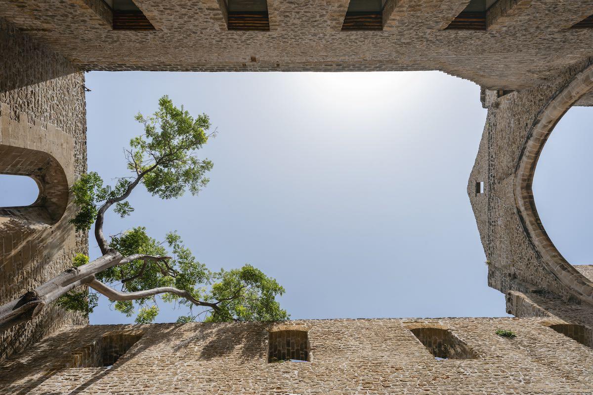 Foto di Luca Savettiere