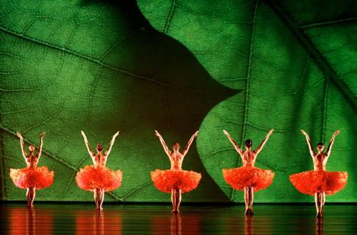 W Momix Forever, momix, 35 anni, teatro nazionale, milano, giugno 2015, danza, ballo, coreografie, foto, gallery, pendleton, 35th anniversary