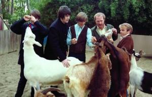 """""""Pet Sounds"""": le foto inedite dei Beach Boys a 50 anni dall'uscita dell'album"""