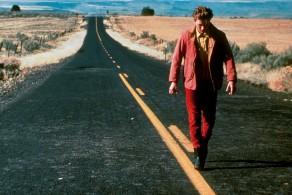 Gus Van Sant, Gus Van Sant/ Icons, My Private Idaho, Paranoid Park, last Days, Elephant, Polaroid, Keanu Reeves, Matt Damon, John Robinson, River Phoenix, Gerry, watercolor, film, Mole Antonelliana, Torino, mostra