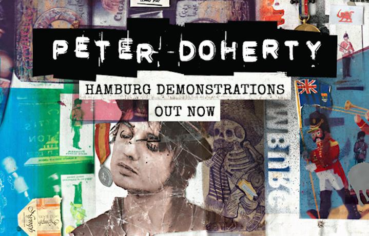 Pete Doherty, Hamburg Demonstrations