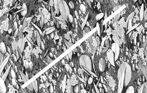 Tellas - Intervallo, Ink on Arches paper, 100 x 70 cm, 2016