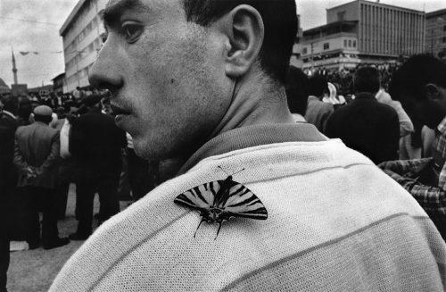Magnum, Magnum Photos, foto, gallery, Miles Davis, Lorenzo Meloni, Peggy Guggenheim,