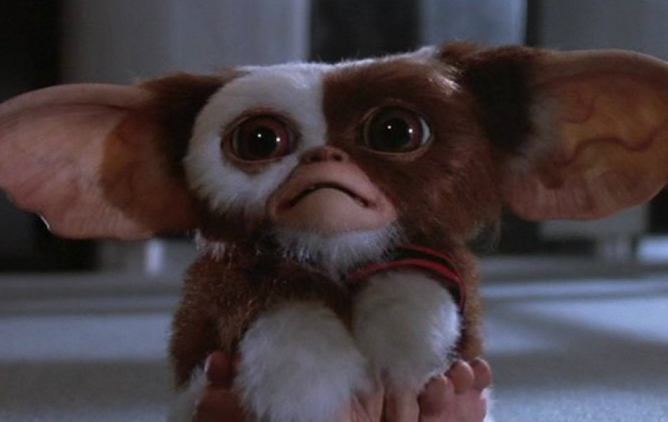 Gremlins 3: Chris Columbus ha completato la sceneggiatura