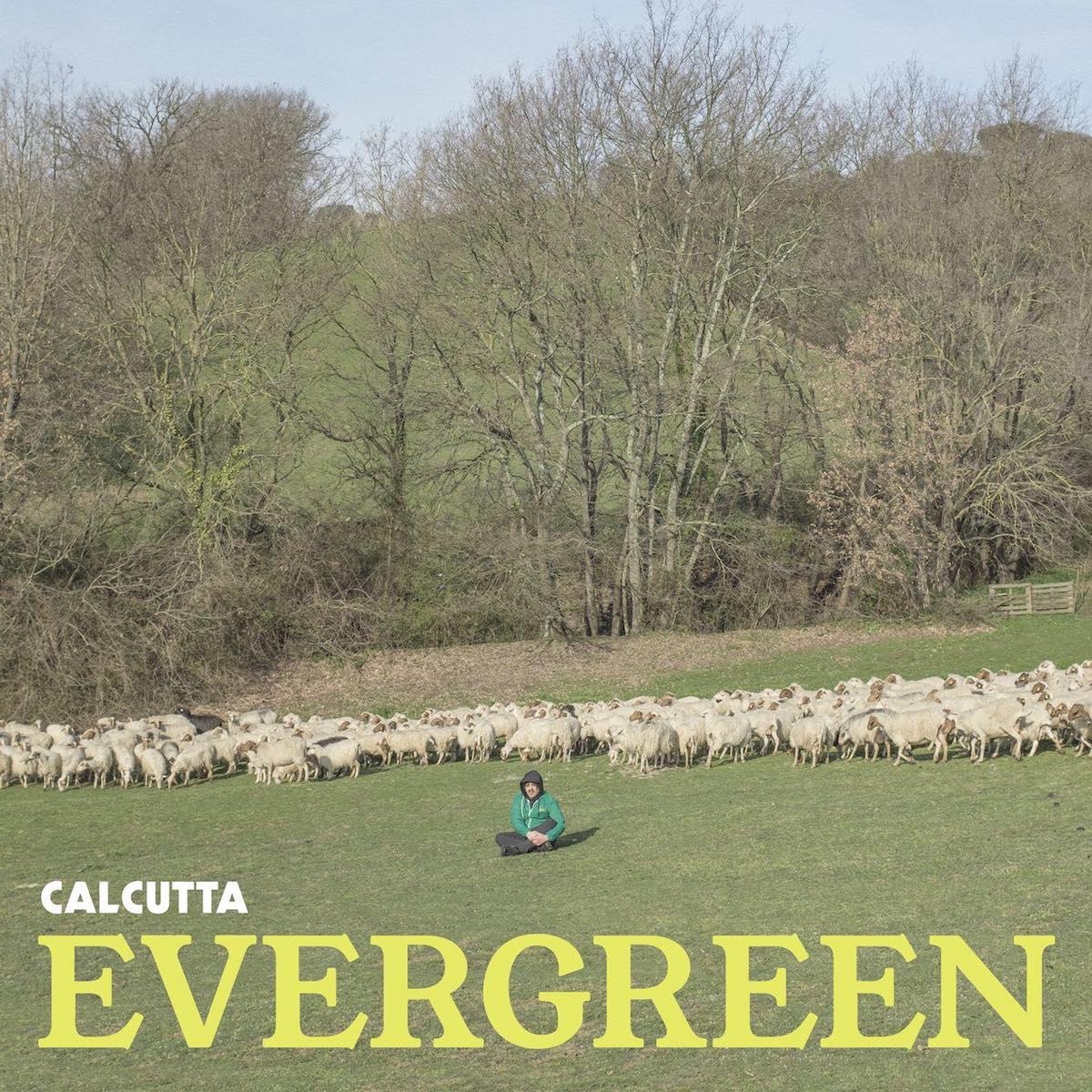 Evergreen - Calcutta
