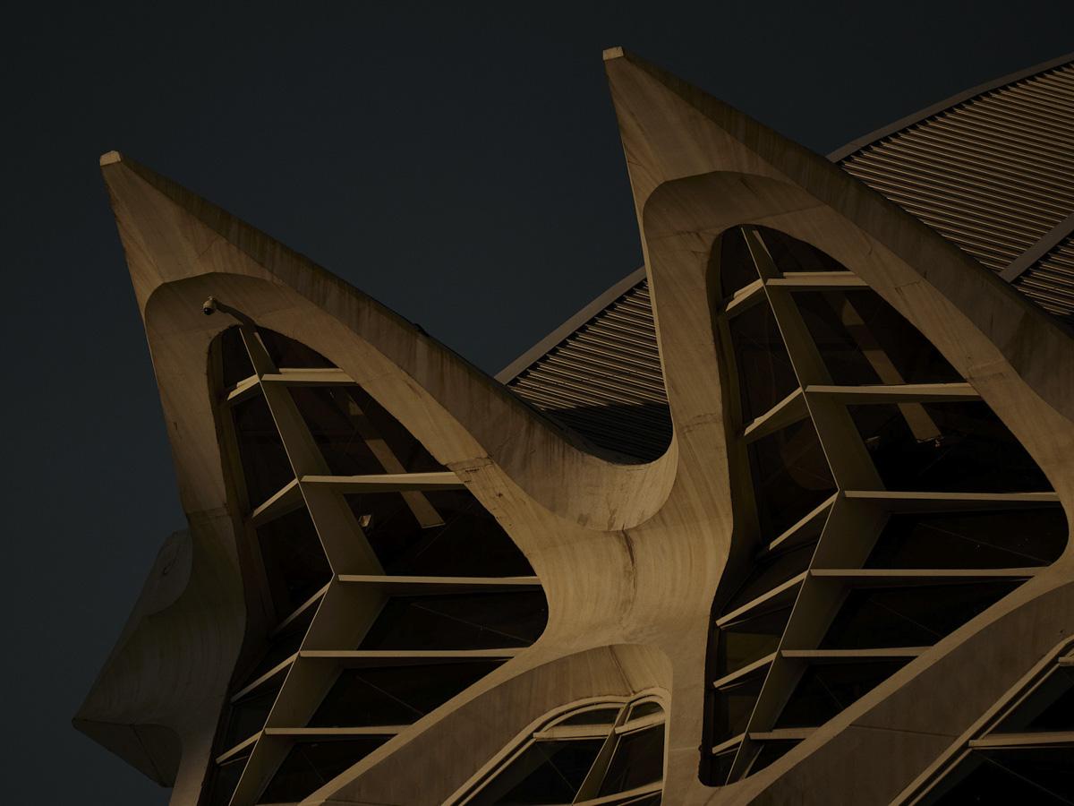 L'architettura di Calatrava è come un mostro marino