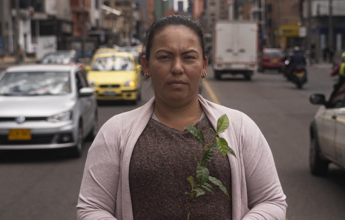 'Coffee Defenders, a Path from Coca to Coffee', guarda il trailer del primo docu-film di Lavazza